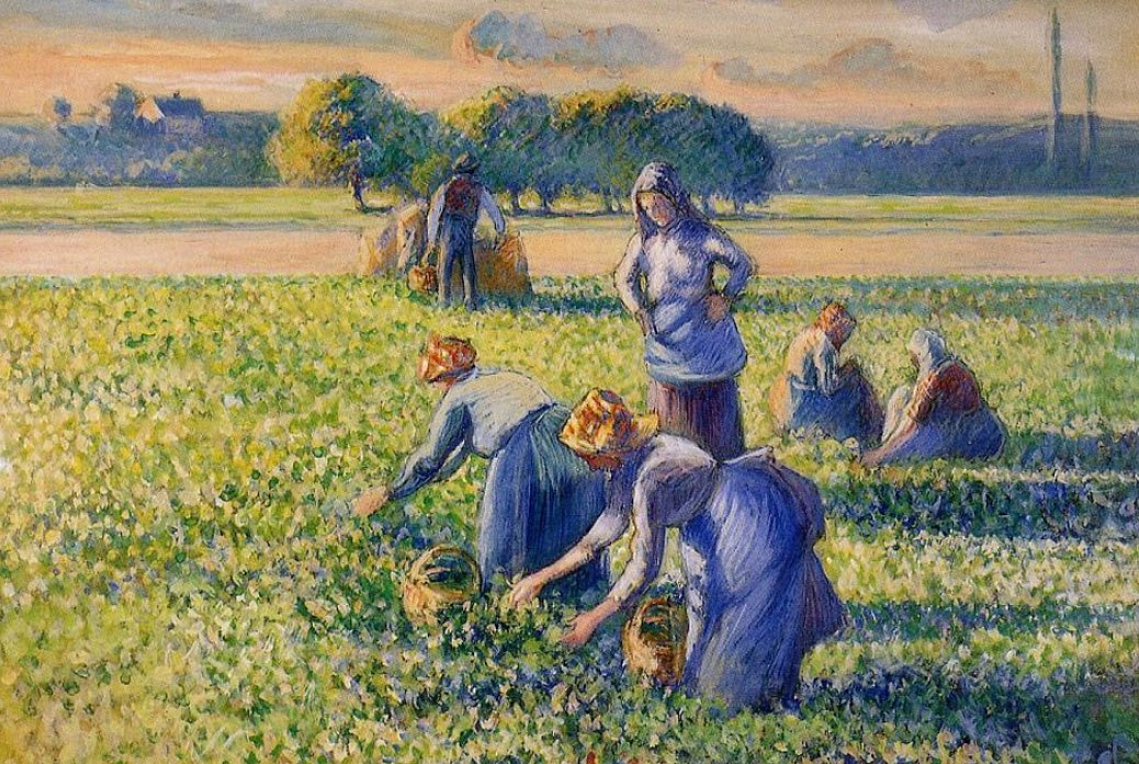 Image result for Picking Peas Camille Pissarro