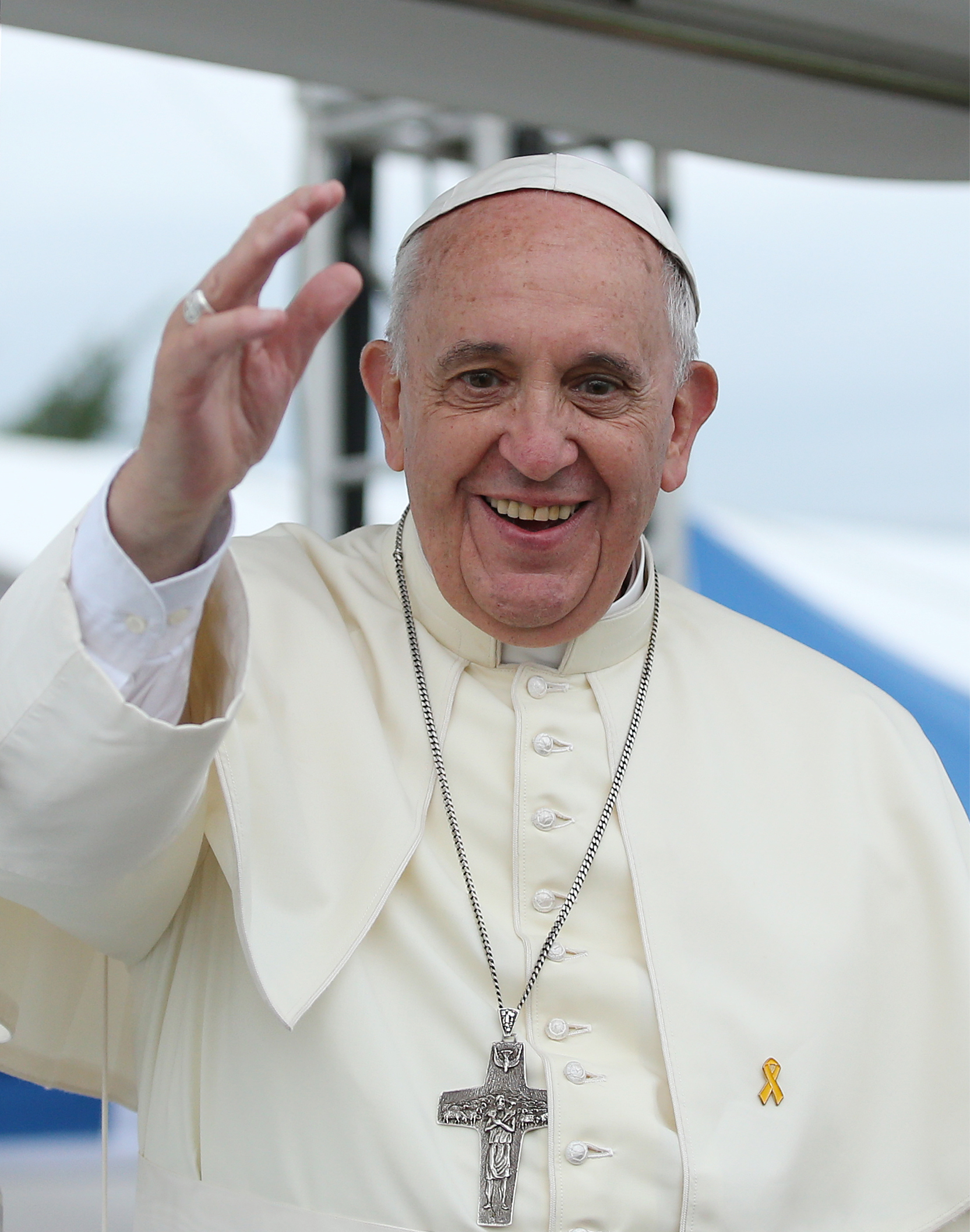 Pope Francis in 2014