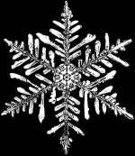 File:Schnee1.jpg