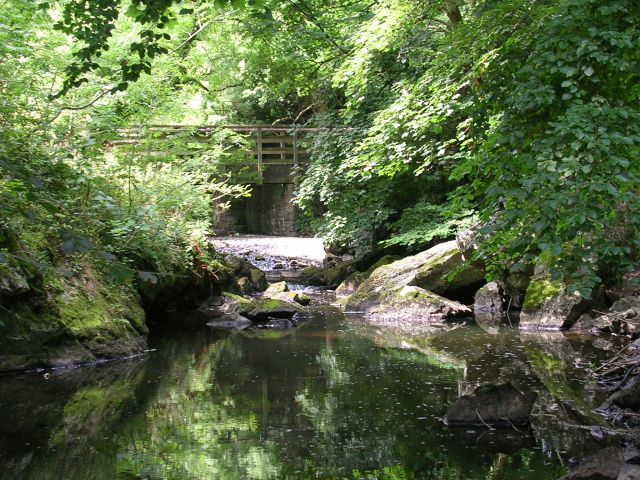 The Dingle, Llangefni. A local nature reserve in the heart of the town of Llangefni. Here the Afon Cefni runs through a wooded valley. Taken from SH457759.