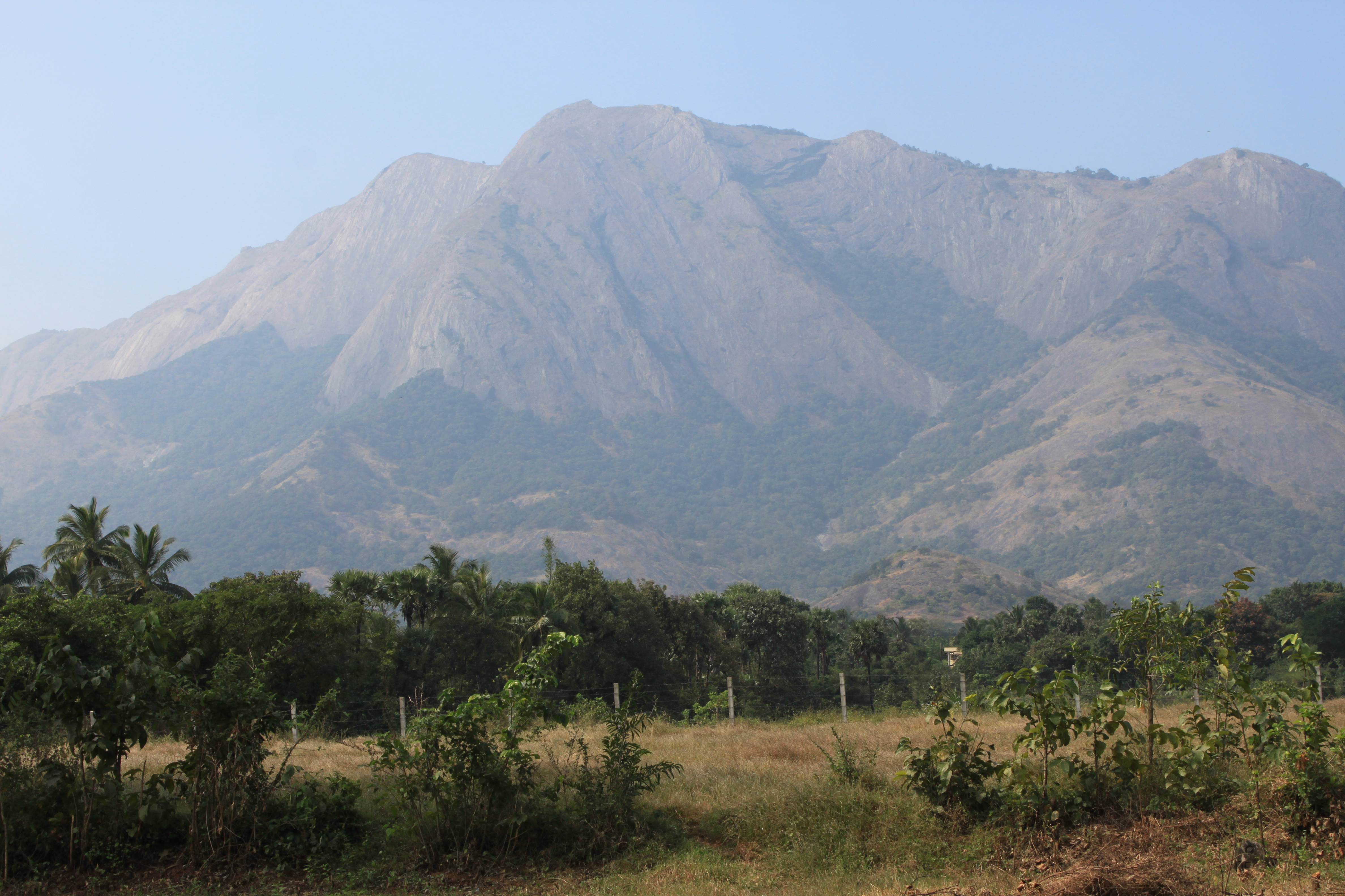 Coimbatore India  city photos gallery : The Majestic Western Ghats along the Palakkad Coimbatore Hwy 47