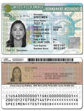 exemplo de Green Card EUA