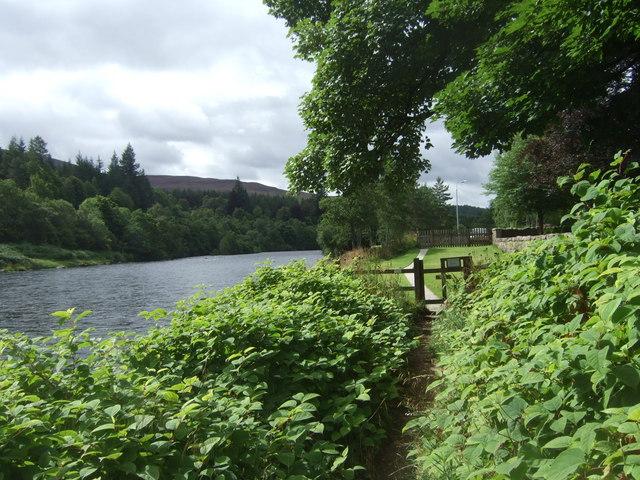 Upstream River Dee - geograph.org.uk - 914853