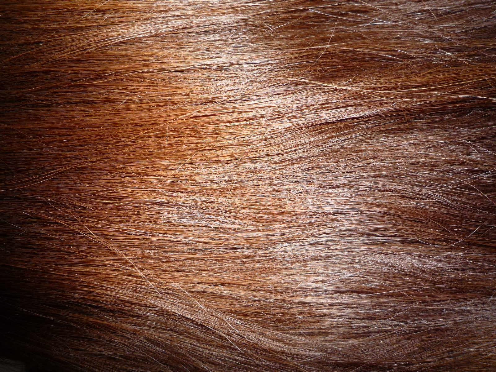 Brown Hair Wikipedia,Colors That Go Well With Red And Black
