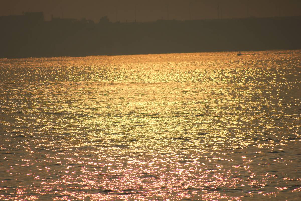 File:Yellow sea light.jpg - Wikimedia Commons