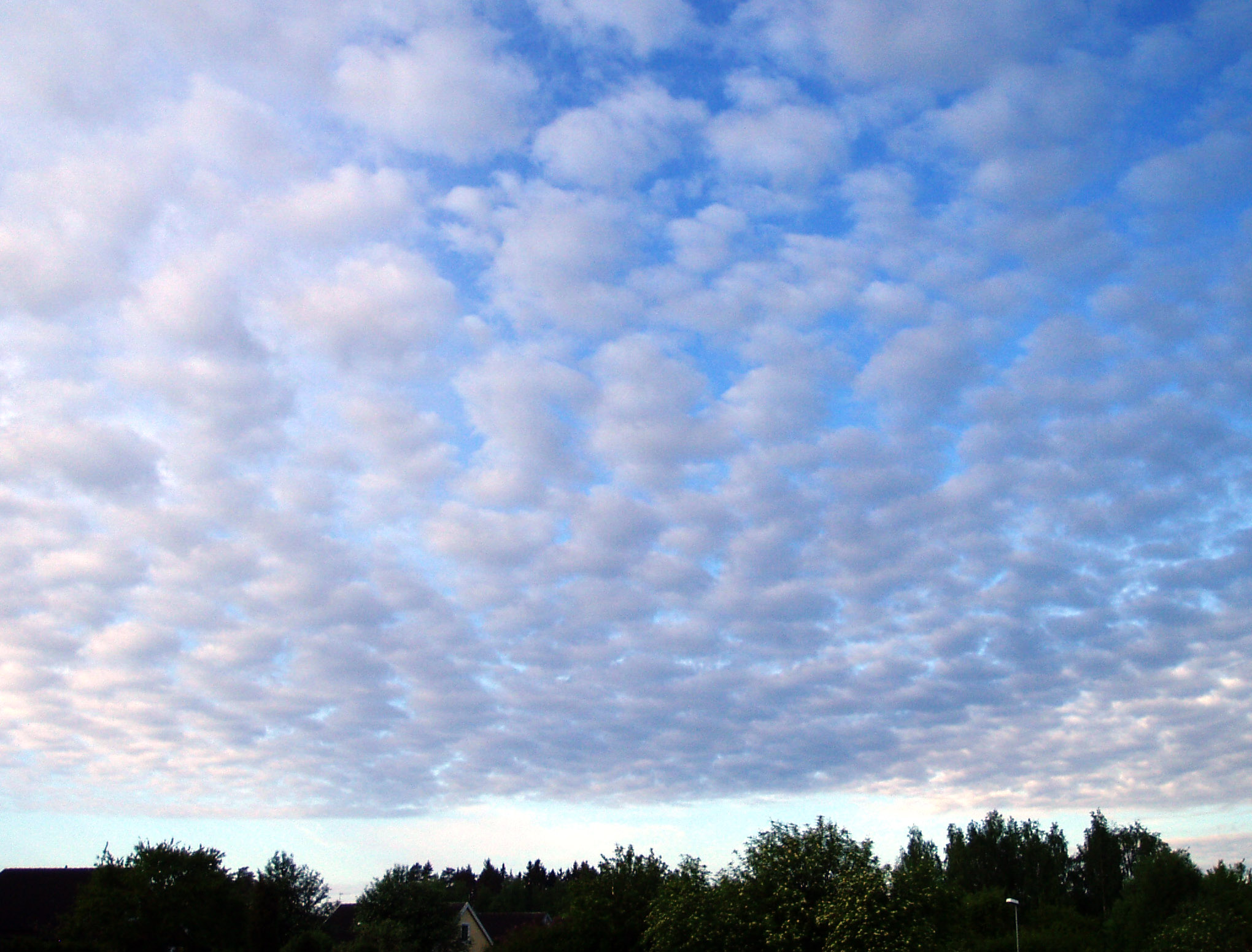 Cloud Types Chart: Cloud - Wikimedia Commons,Chart