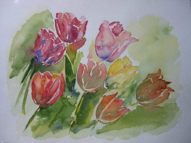 http://upload.wikimedia.org/wikipedia/commons/3/3b/Aquarelle_Tulipe.jpg