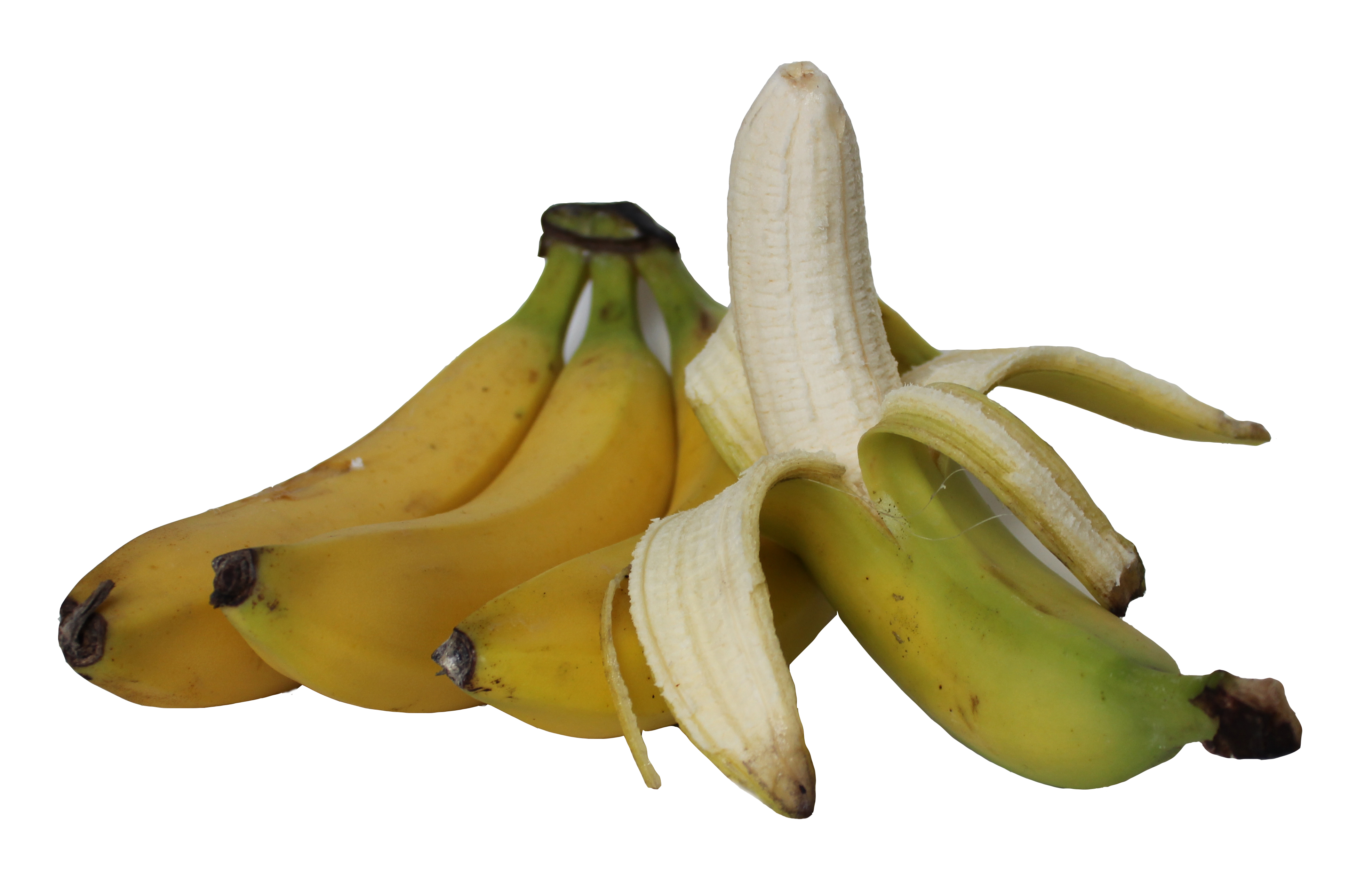 ethanol production from banana peels Kinetics studies on ethanol production from banana peel waste using mutant strain of saccharomyces cerevisiae pretreatment of banana peels.