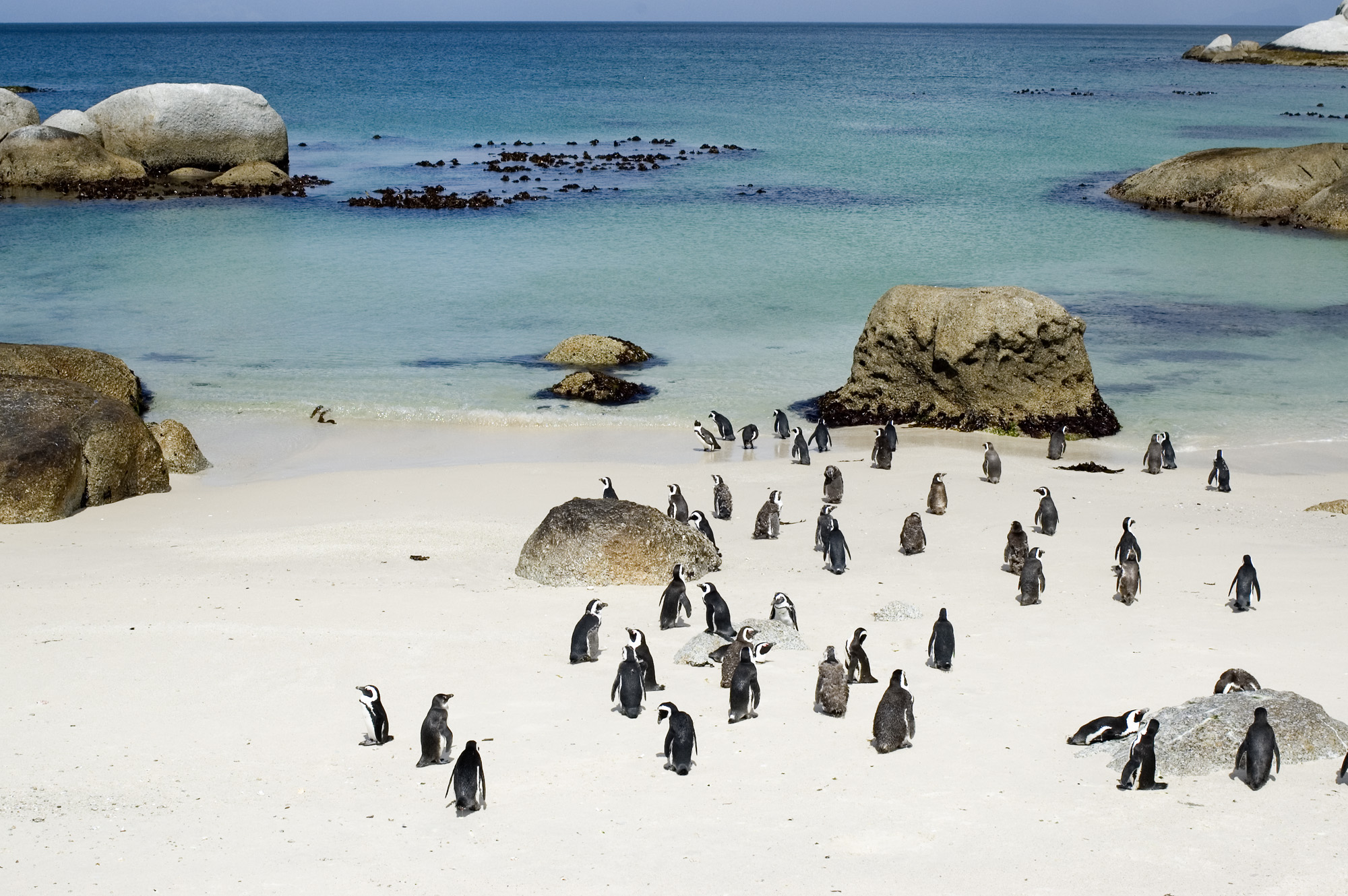 Boulders Beach South Africa Weather