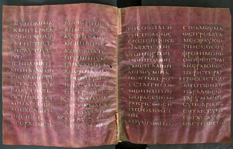 Codex Petropolitanus Purpureus Matt. 10%2C10 17