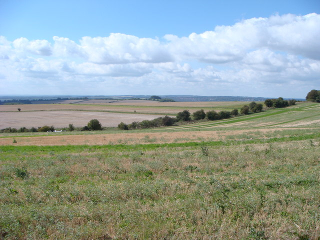 Fawley Down above Winchester - geograph.org.uk - 551998