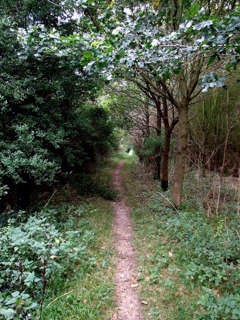 Footpath to Bag Enderby - geograph.org.uk - 577627.jpg