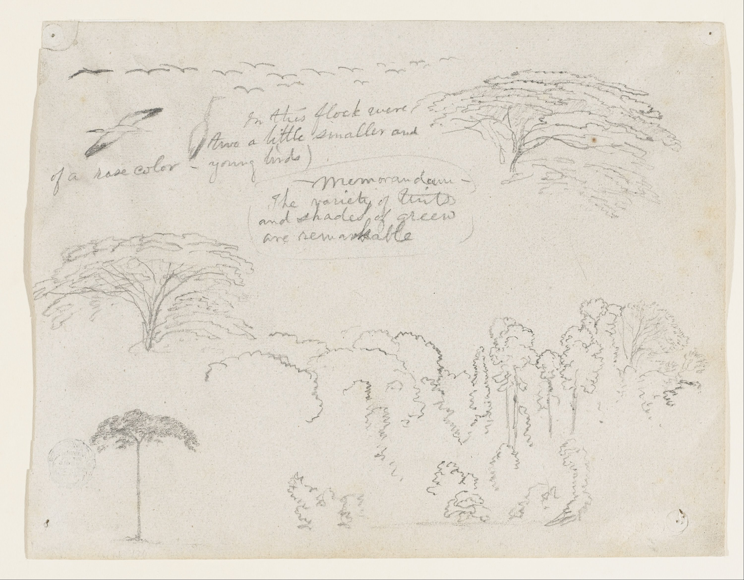 Sketch by Frederic Edwin Church, 1853