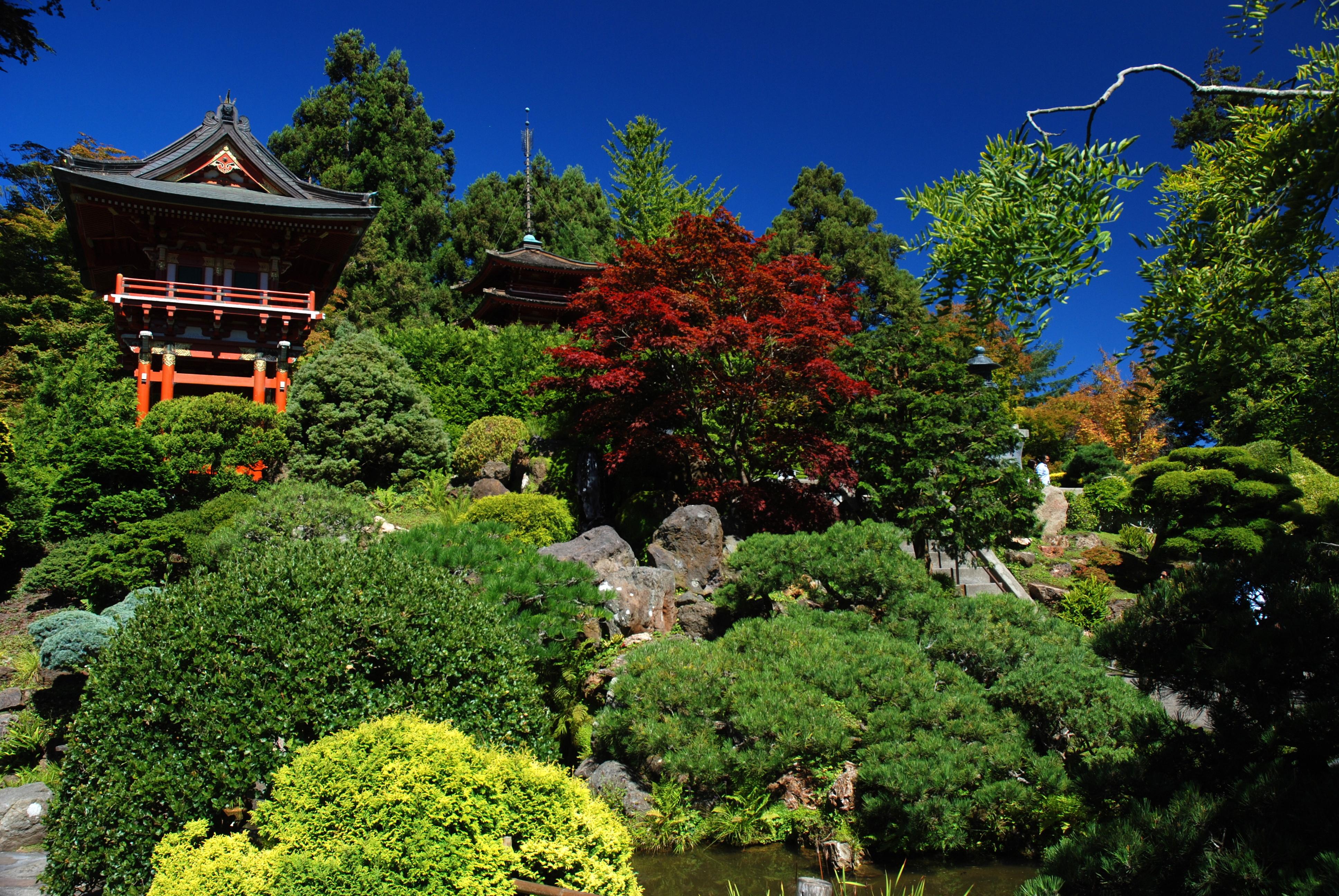 File Japanese Garden Golden Gate Park Jpg Wikimedia Commons