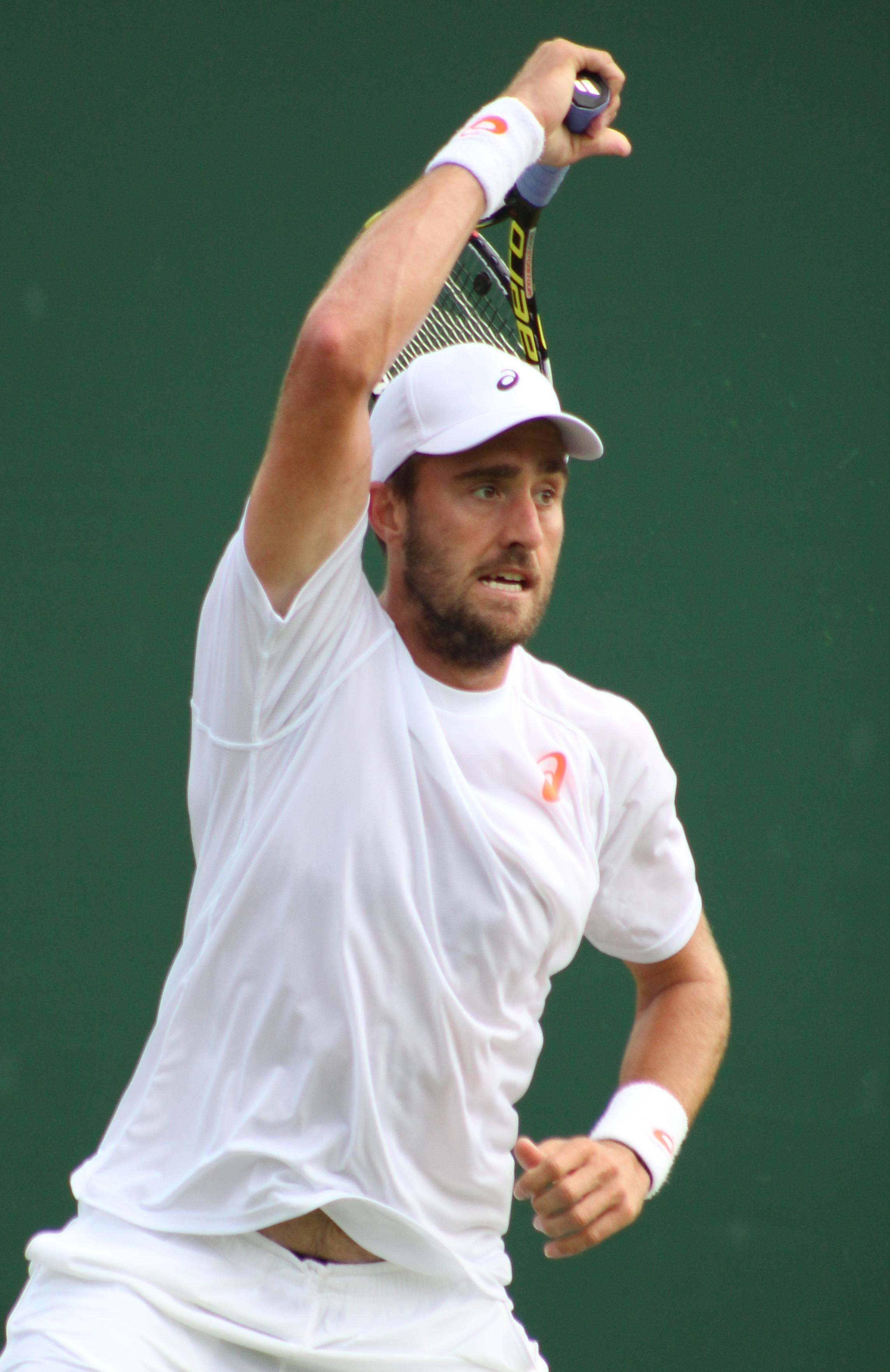 Steve Johnson tenista Wikiwand