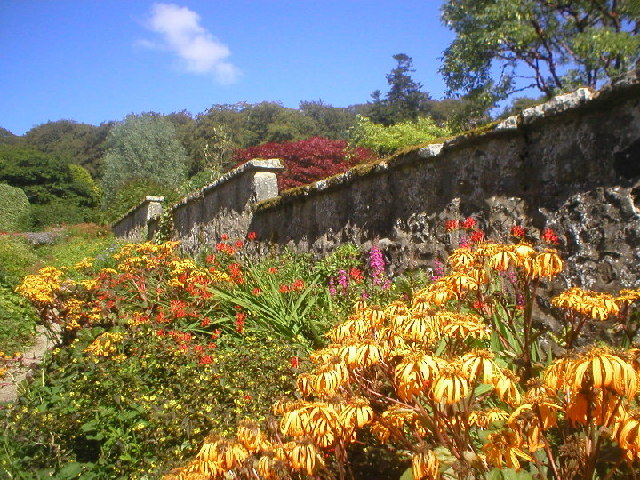 Leith Hall Gardens - geograph.org.uk - 94142