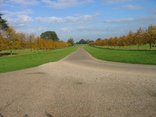 Main drive leading to Beningbrough Hall - geograph.org.uk - 1541703