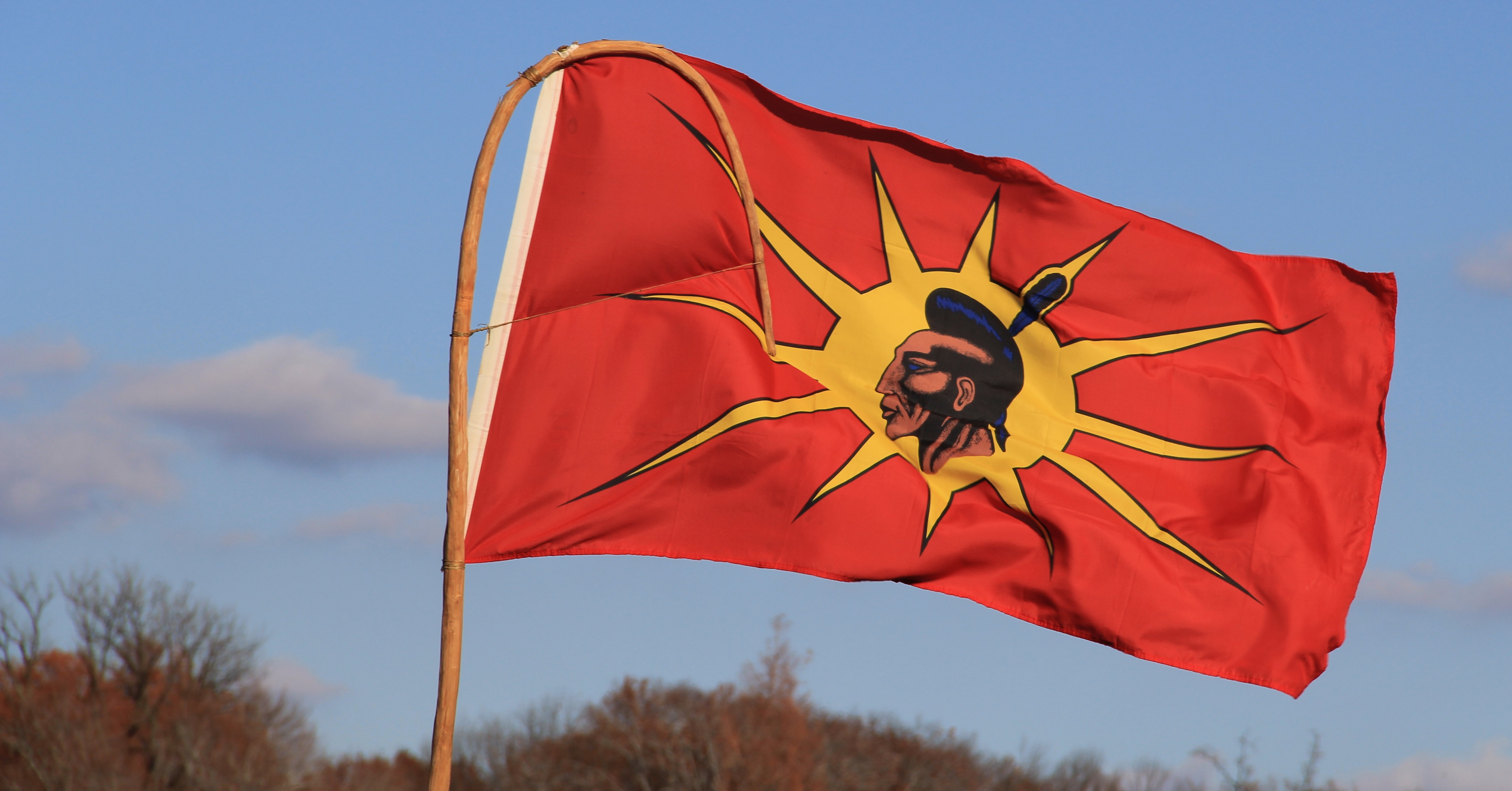 Indian Flag History: File:Native American Flag At Beyond NoDAPL March On