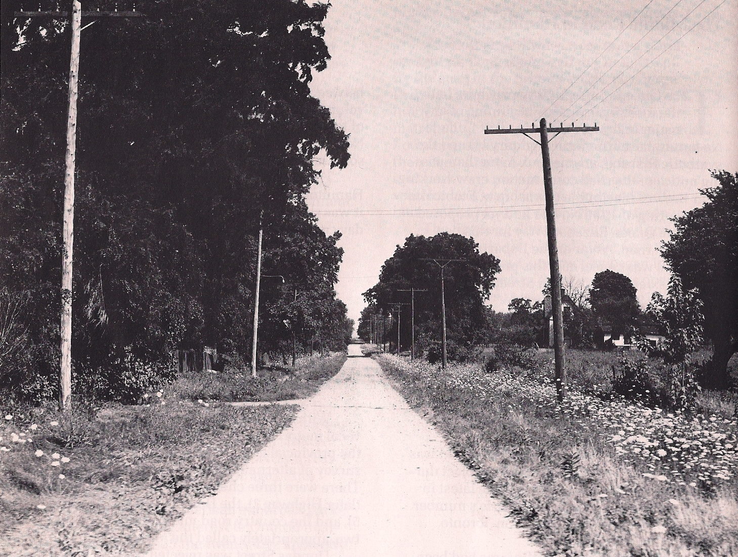 Old_Middle_Road.png