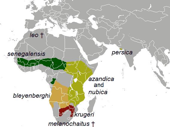 Verbreitungsgebiet der allgemein akzeptierten Unterarten am Ende des 20.Jahrhunderts