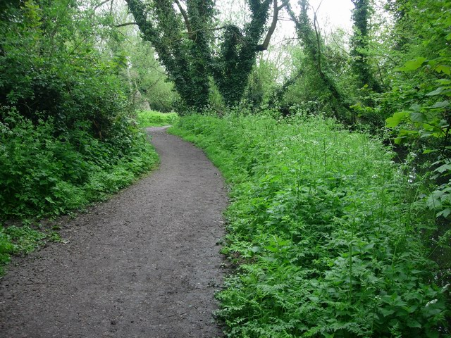 Paradise Nature Reserve - geograph.org.uk - 789906