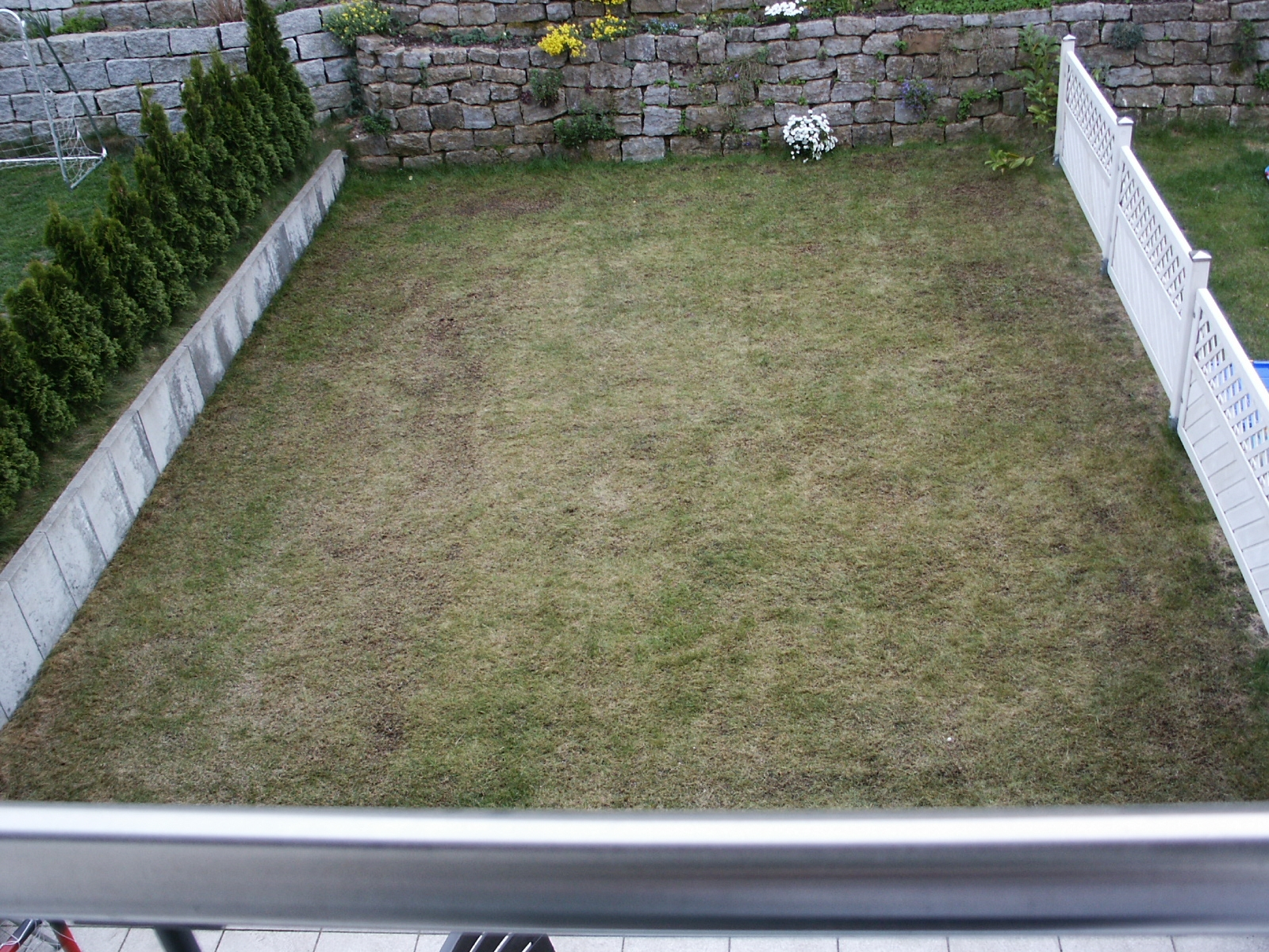 Datei Rasen Nach Der Reinigung Dungung Und Einsamung Jpg Wikipedia