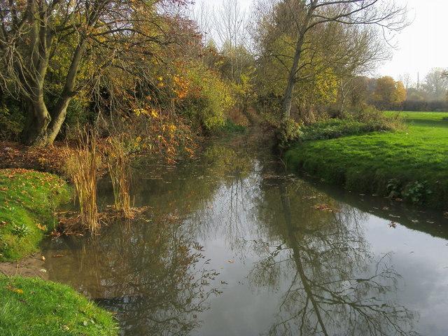 River Evenlode - geograph.org.uk - 1563149