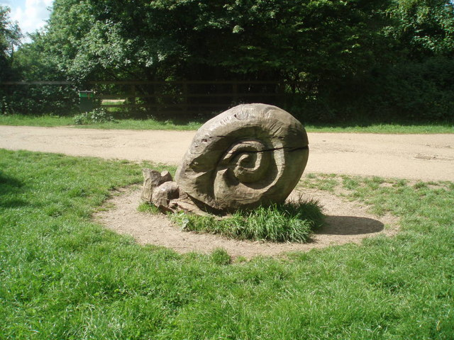 Snail in stone - geograph.org.uk - 1314642