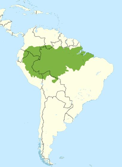 Filesouth america wikivoyage locator maps amazon rainforest filesouth america wikivoyage locator maps amazon rainforest greeng gumiabroncs Gallery