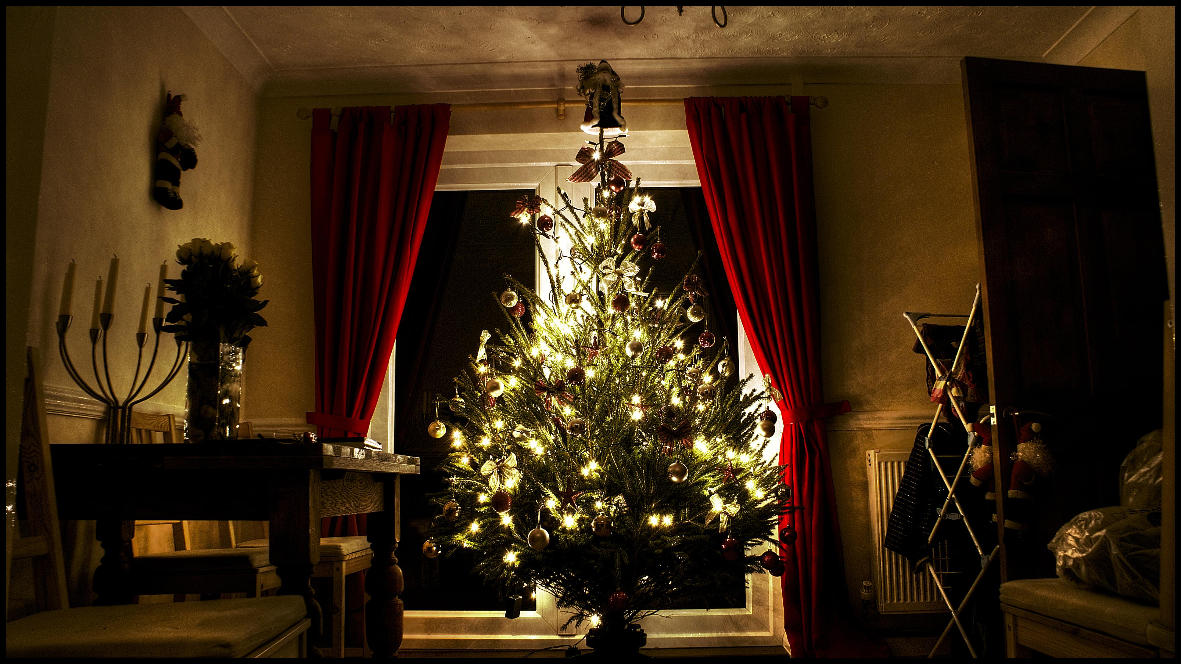 Steve Wilson's Christmas Tree