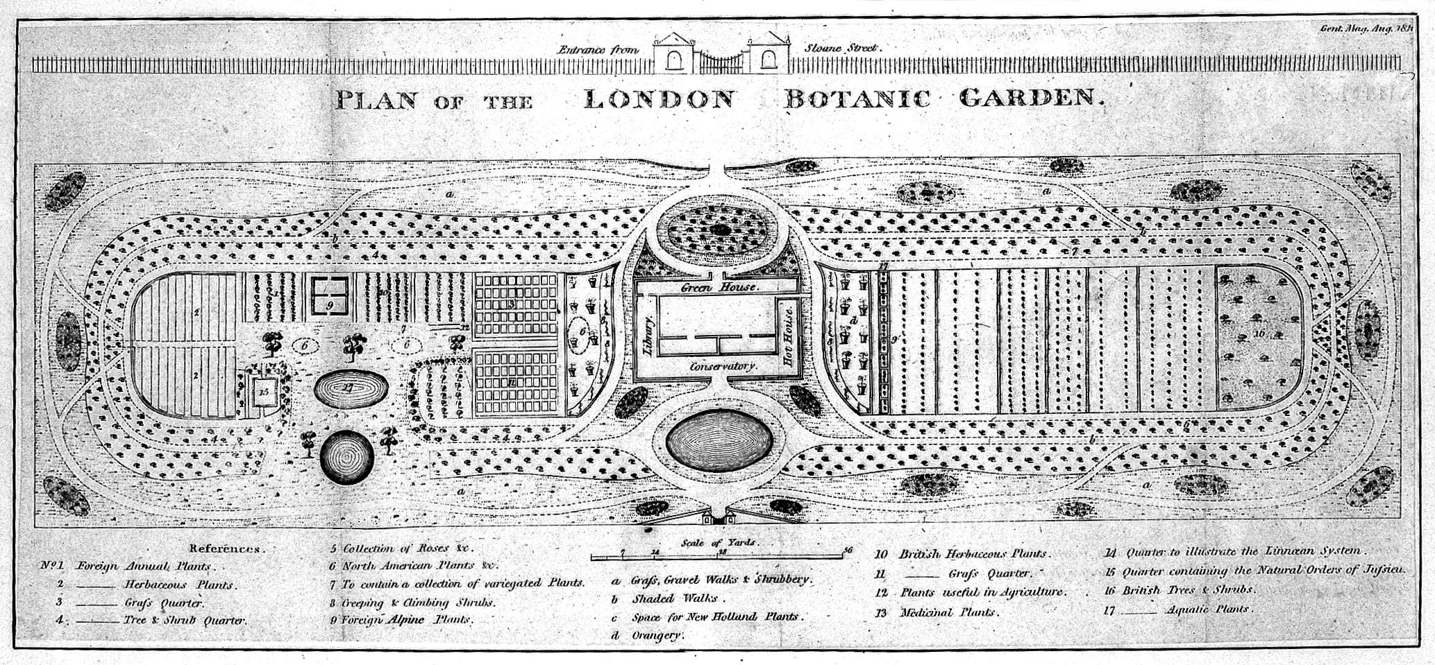 Physic garden wikipedia - File The Physic Garden Chelsea A Plan View With A Key Describin Wellcome