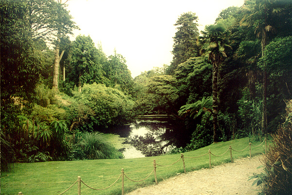 The lost Gardens of Heligan - geograph.org.uk - 2616