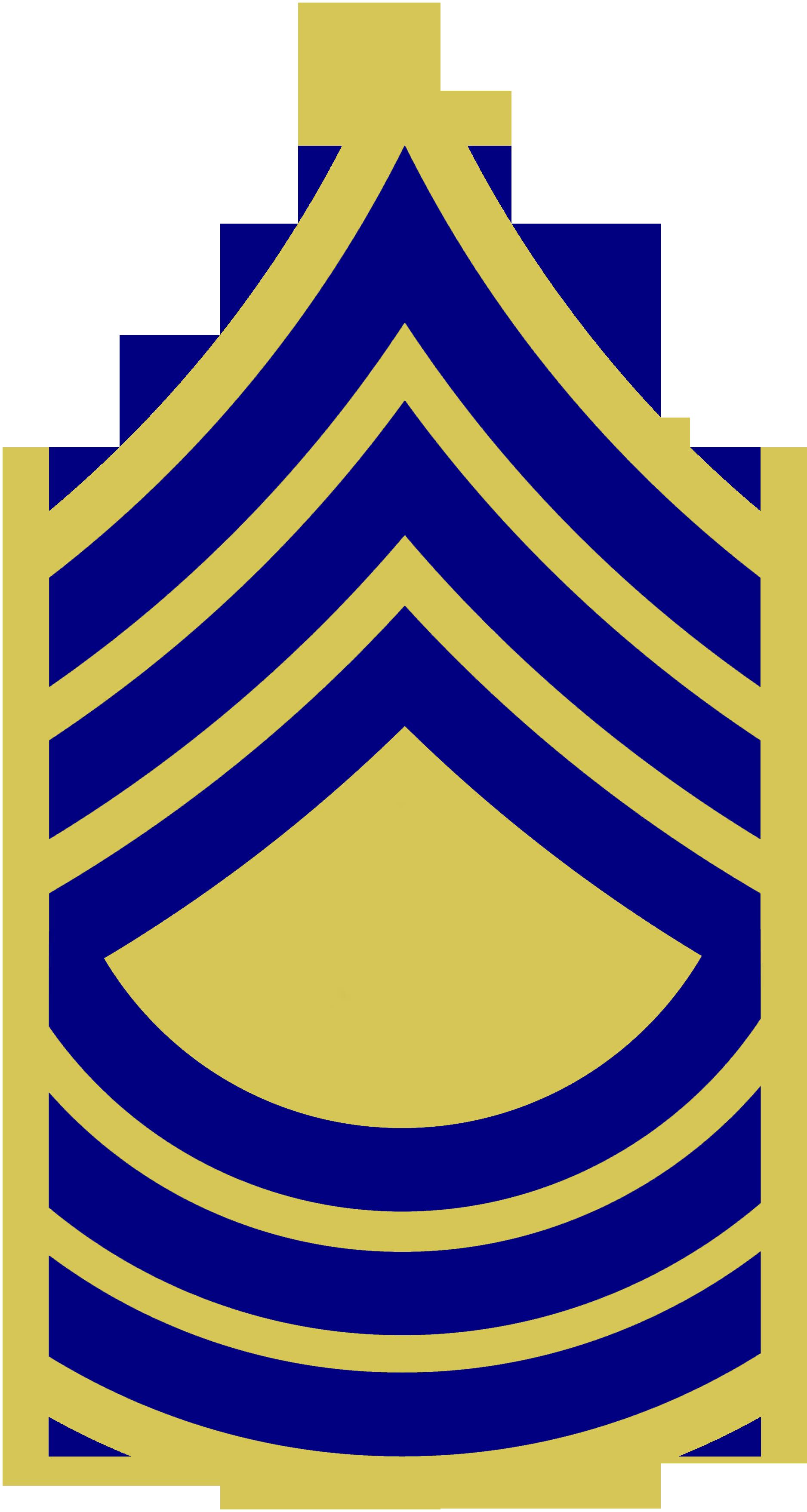 Description us army 1948 msgt combat