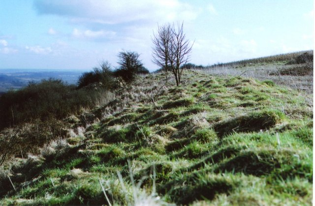Walbury Hill - iron-age hillfort - geograph.org.uk - 1194117