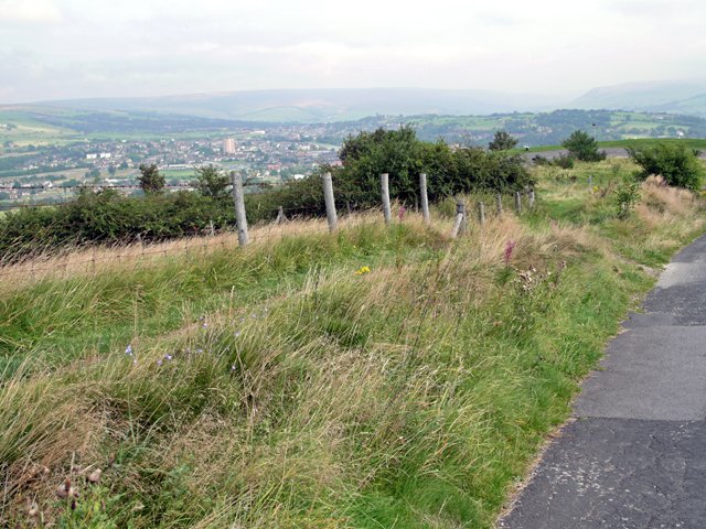 Werneth Low - geograph.org.uk - 1116152