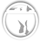 Wikisource action bar icon.png
