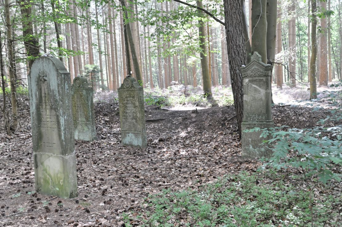 Wingst 2014 Judenfriedhof by-RaBoe 19.jpg