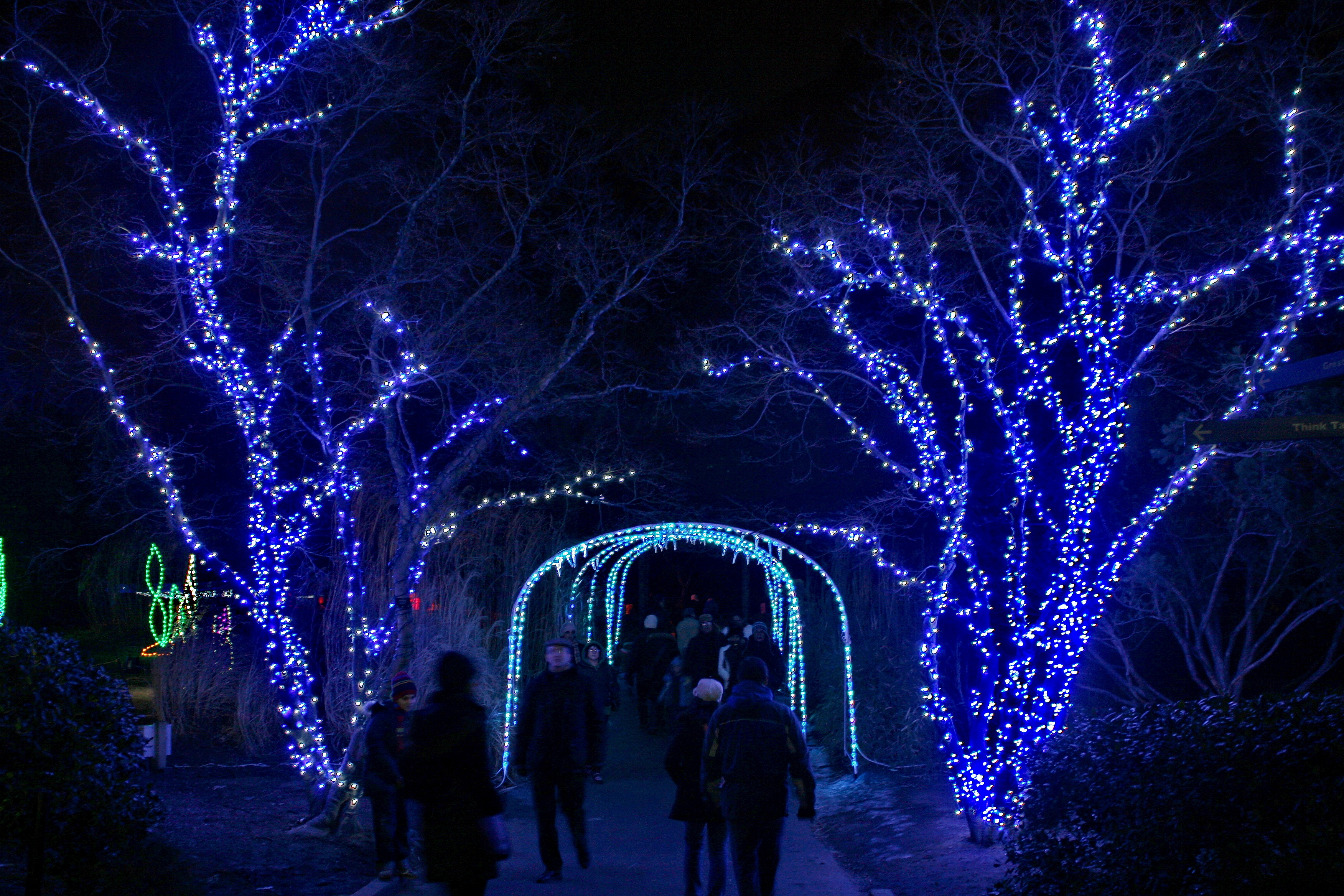 File:ZooLights 2010 - Holiday Lights at the National Zoo (5308917838 ...