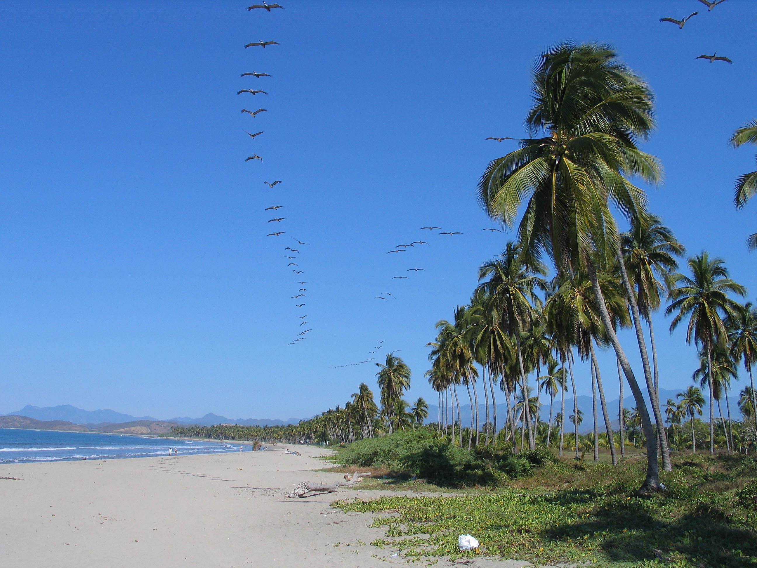 Description 20050103-Ixtapa Playa Linda.jpg
