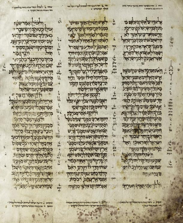 Page from the Codex