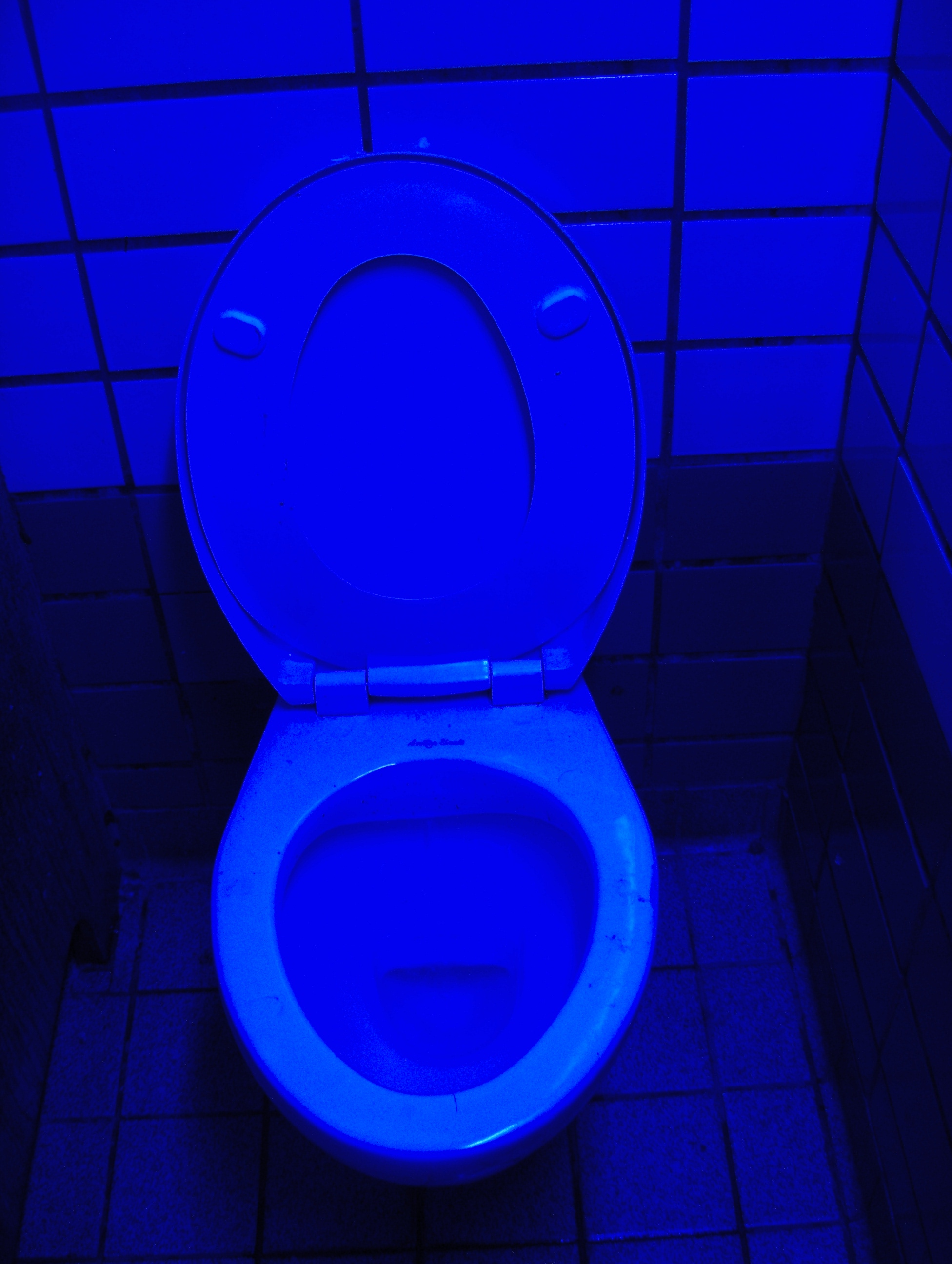 file blue light toilets jpg wikimedia commons. Black Bedroom Furniture Sets. Home Design Ideas