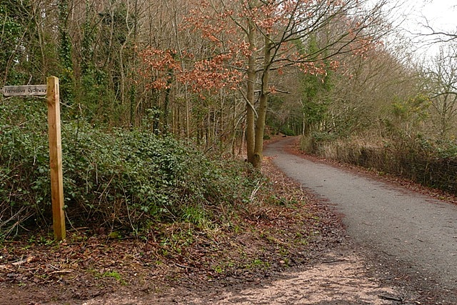 Budleigh Salterton cycle path - geograph.org.uk - 1139466
