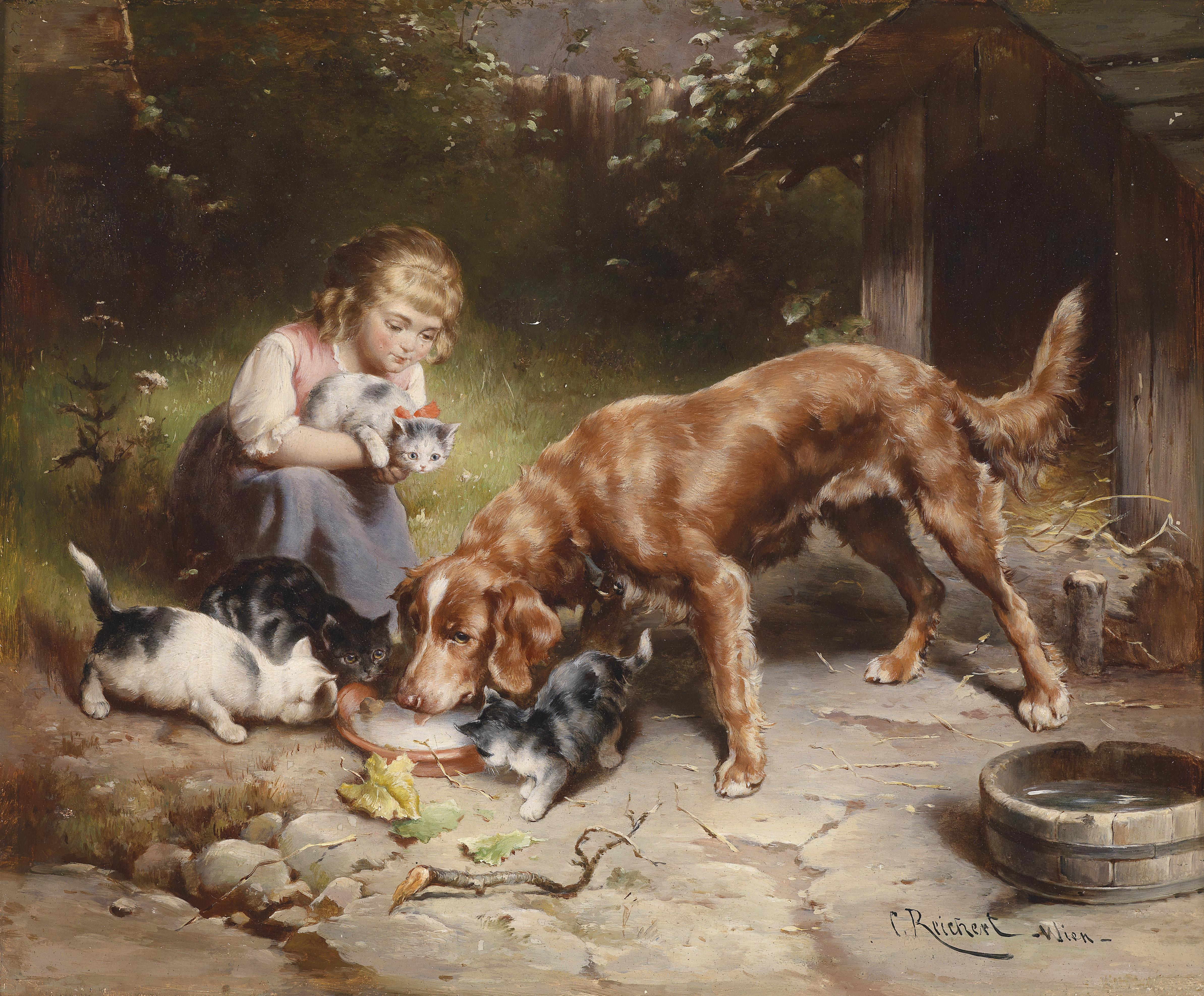 Public Domain Images Cats And Dogs Eating