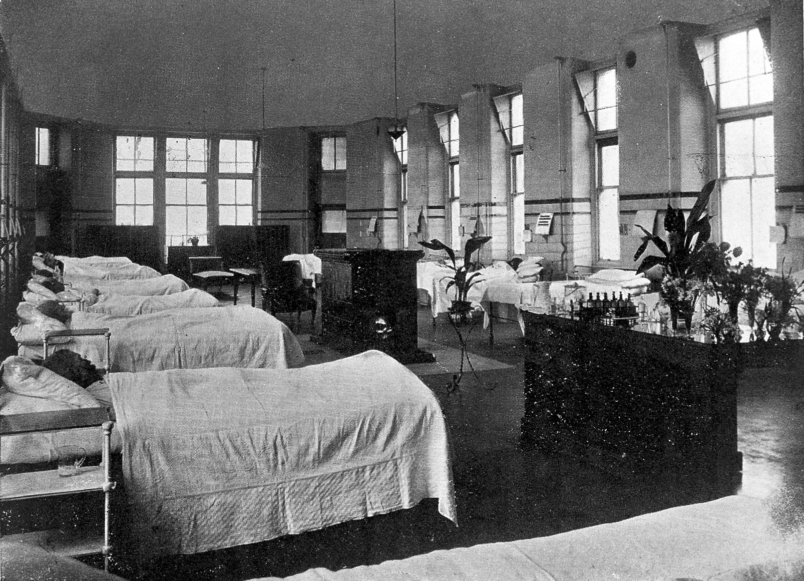 A hospital ward with rows of beds in London, 1916