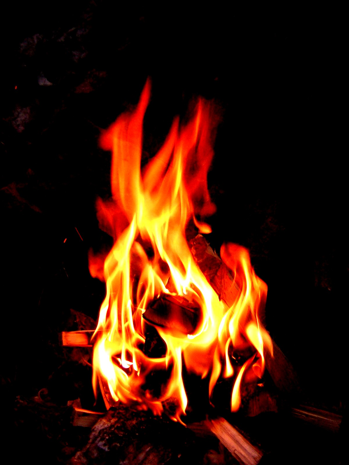 combustion wikipedia