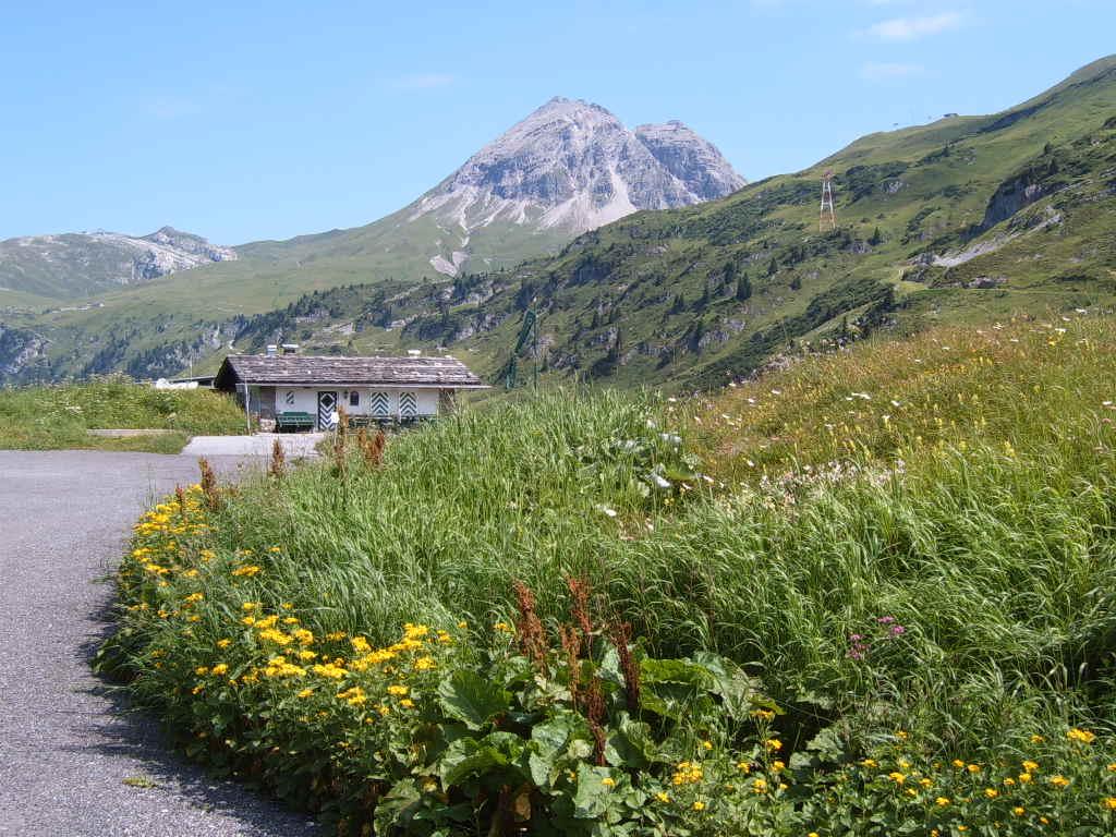 Zwischen Vorarlberg und Tirol