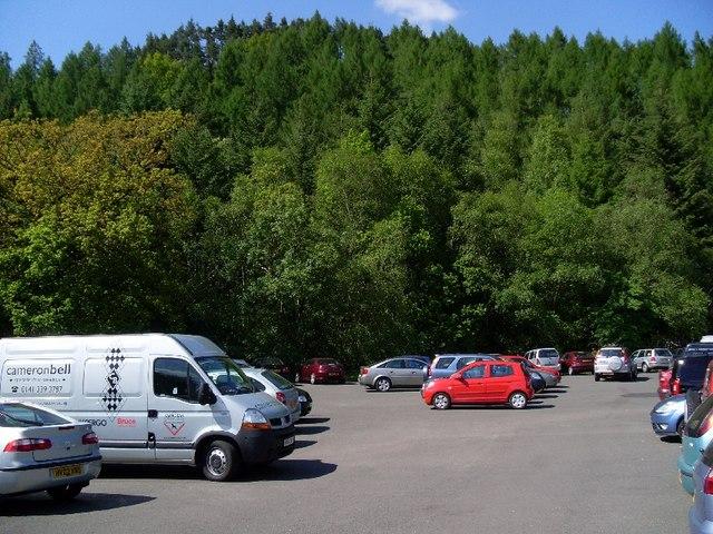 High trees behind Balmaha car park - geograph.org.uk - 828047