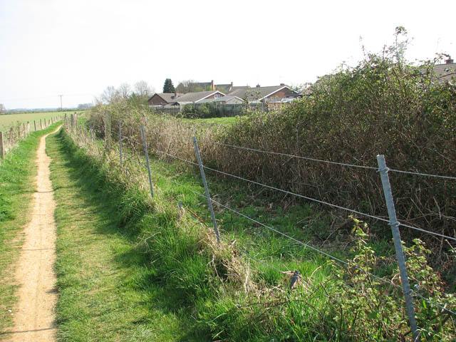 Houses by the railway line - geograph.org.uk - 1244663
