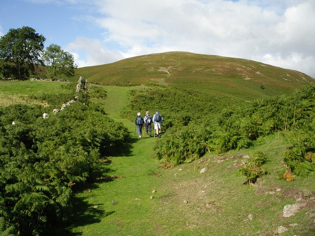 Humbleton Hill Footpath - geograph.org.uk - 365624