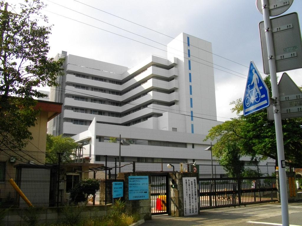 Hikaru Saeki